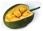 jackfruit_product